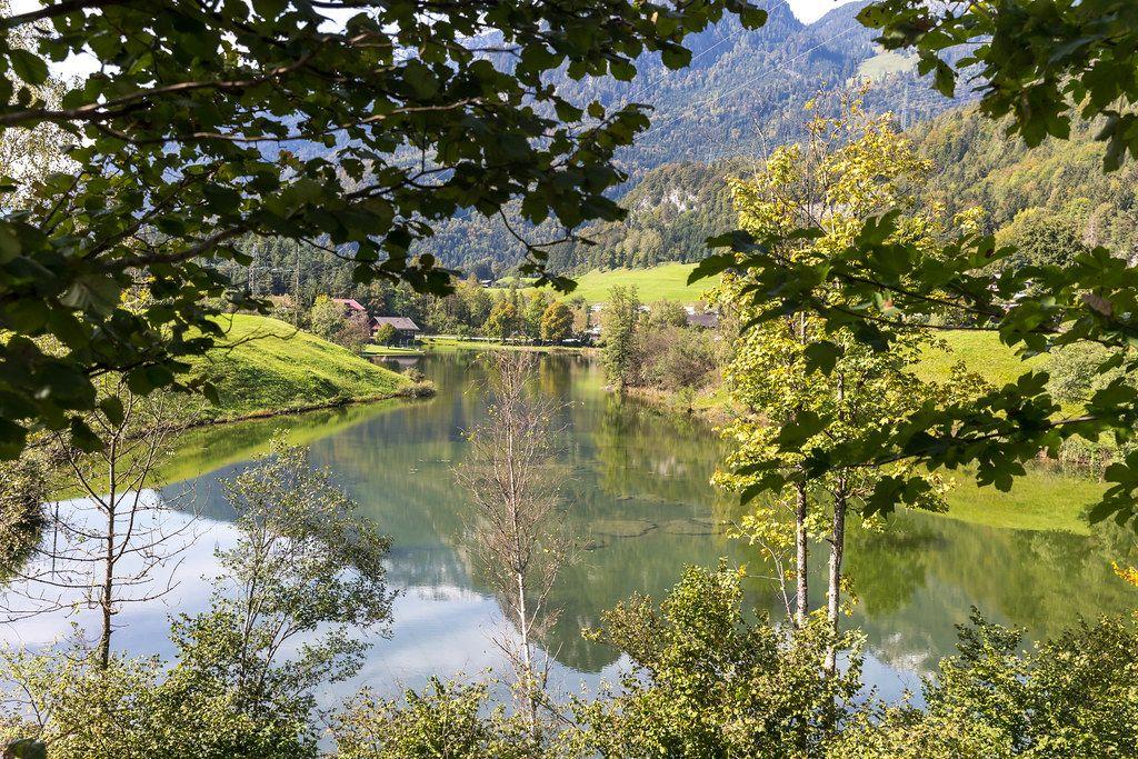 Blick ins Grüne - der Krummsee: ein beliebter Badesee in Tirol (Österreich)