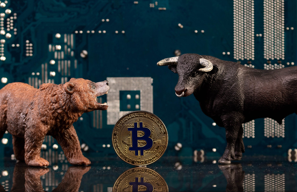 Brown bear and black bull with golden Bitcoin coin and computer parts in the background