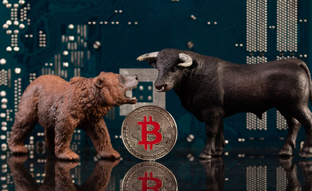 Brown bear and black bull with silver Bitcoin coin and computer parts in the background