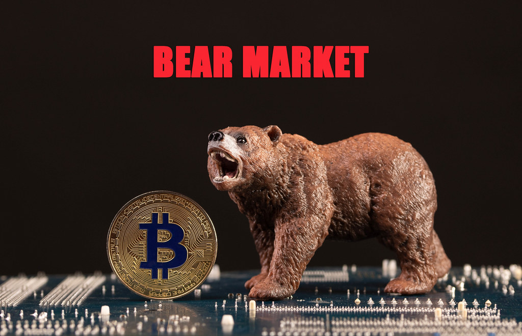 Brown bear with Bitcoin and Bear Market text