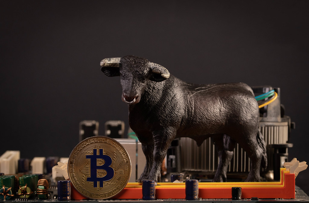 Bull With Bitcoin Cryptocurrency On Computer Motherboard