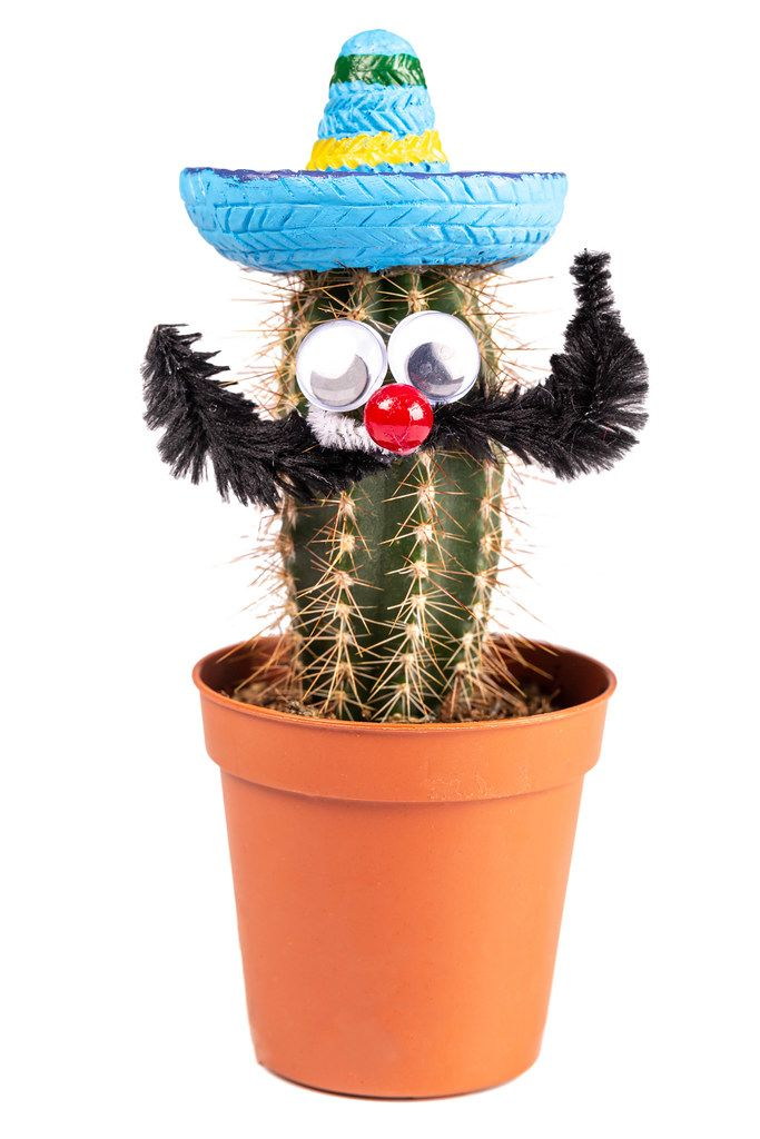 Cactus in Hawaiian hat with face and mustache
