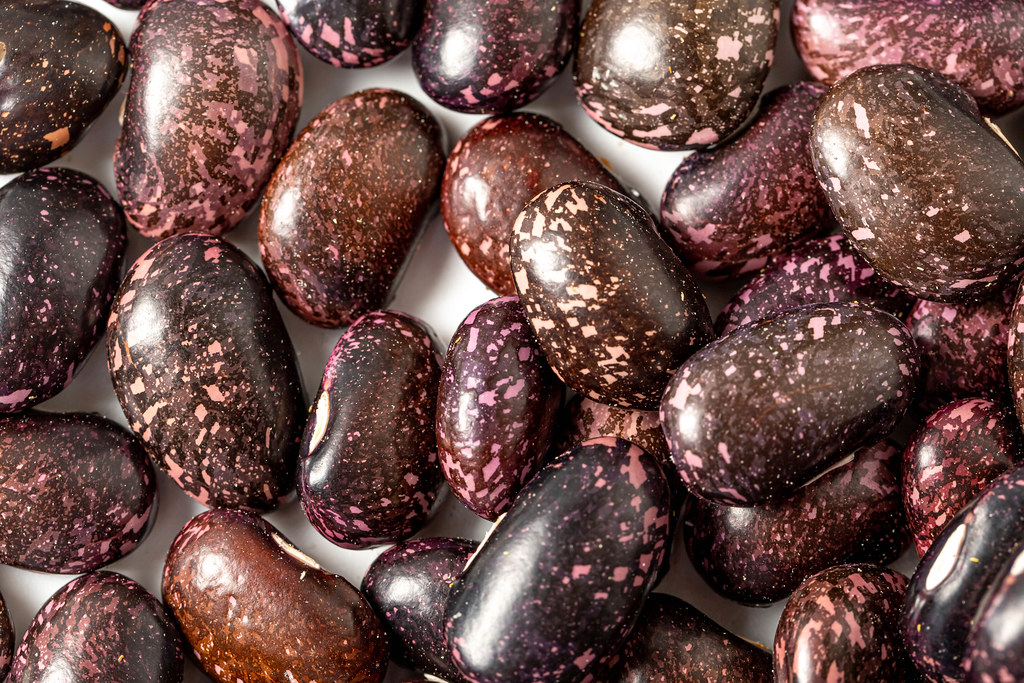 Close-up, dark-colored beans