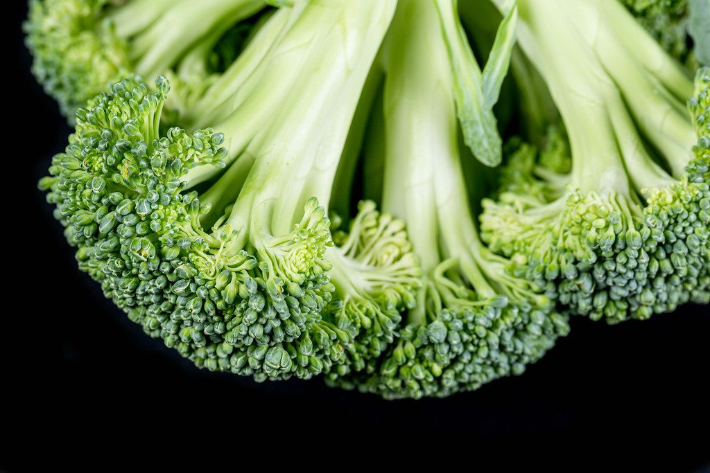 Close-up, fresh broccoli on a black background