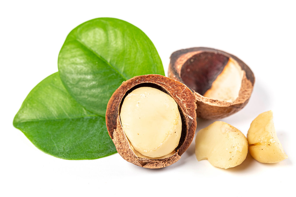 Close-up, macadam nut on white background with green leaves