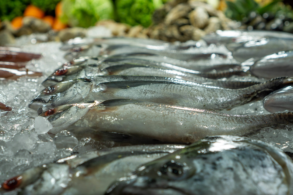 Close Up Photo of Fresh Amberjack Fish on Crushed Ice with Mussels and other Seafood in the Background on a Barbecue Street Food Cart at a Night Market in Vietnam