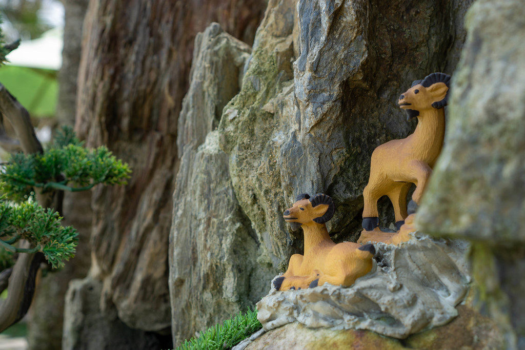 Close Up Photo of Miniature Animal Mouflon as Decoration in a Garden next to a Pond at Sound of Silence Coffee in Hoi An, Vietnam