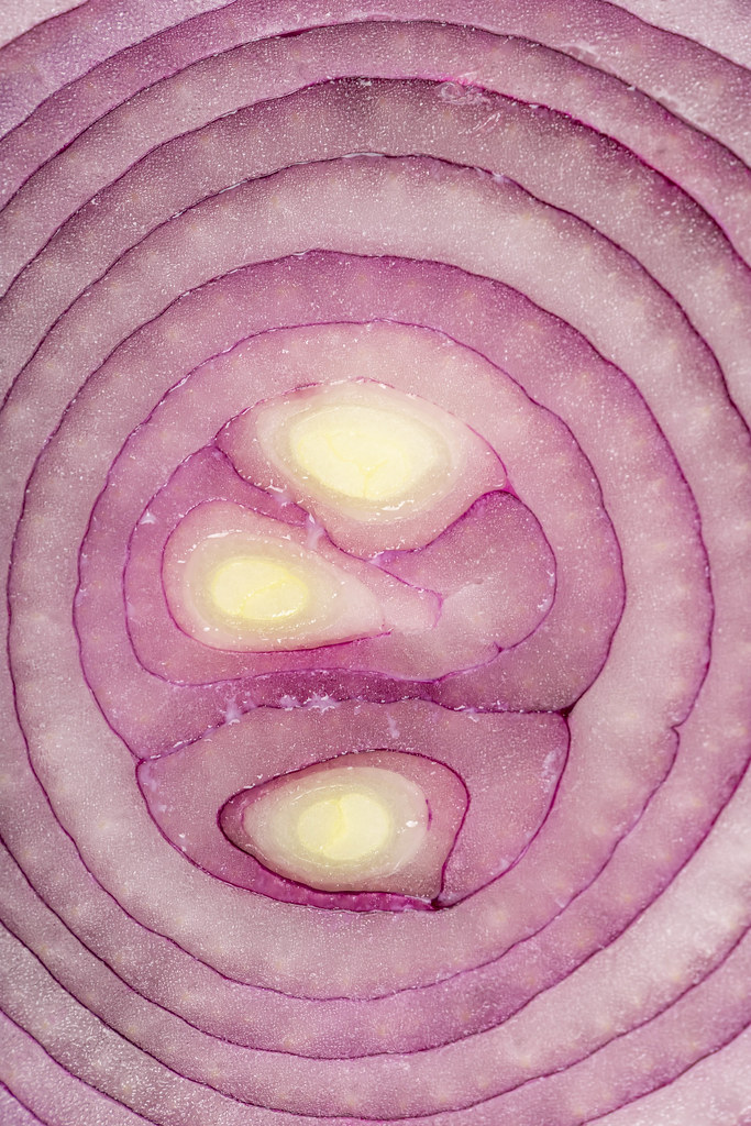 Close up, purple onion slice as a background