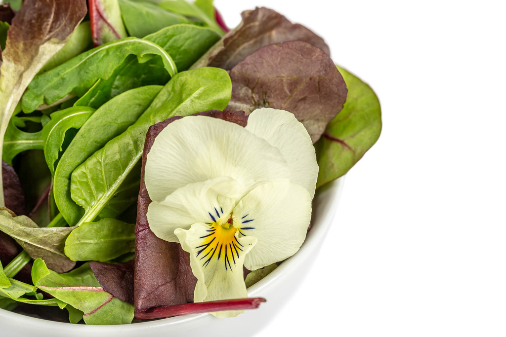 Close up, salad mix arugula, lettuce,spinach and flower on white background