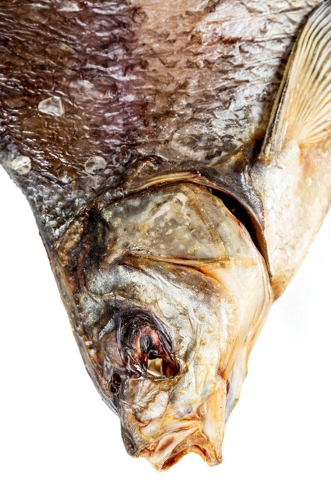 Close up, salted dried bream