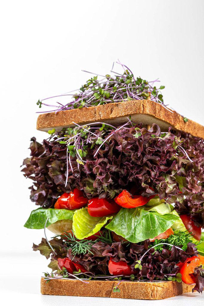 Close-up, vegetarian fresh big sandwich