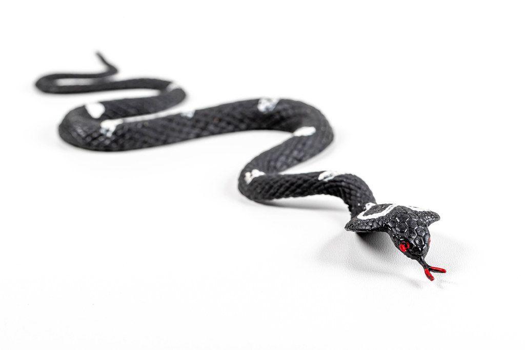 Cobra toy snake on a white background