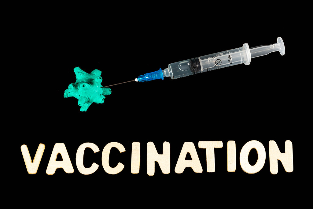 Concept of protection against viruses through vaccination