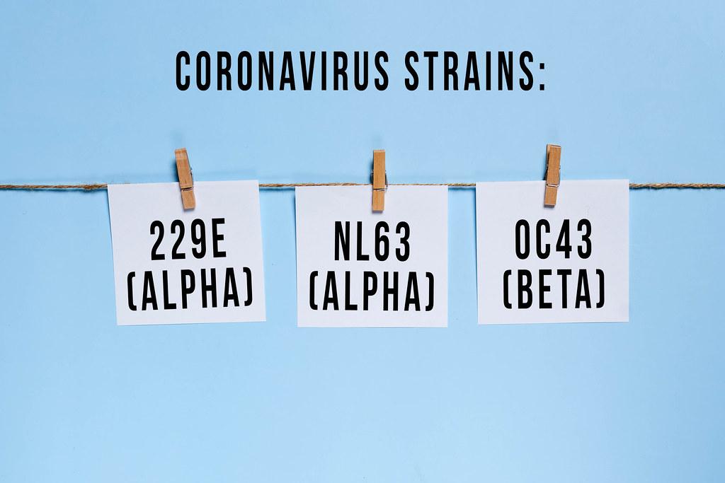 Coronavirus strains - 229E Alpha, NL63 Alpa, OC43 Beta