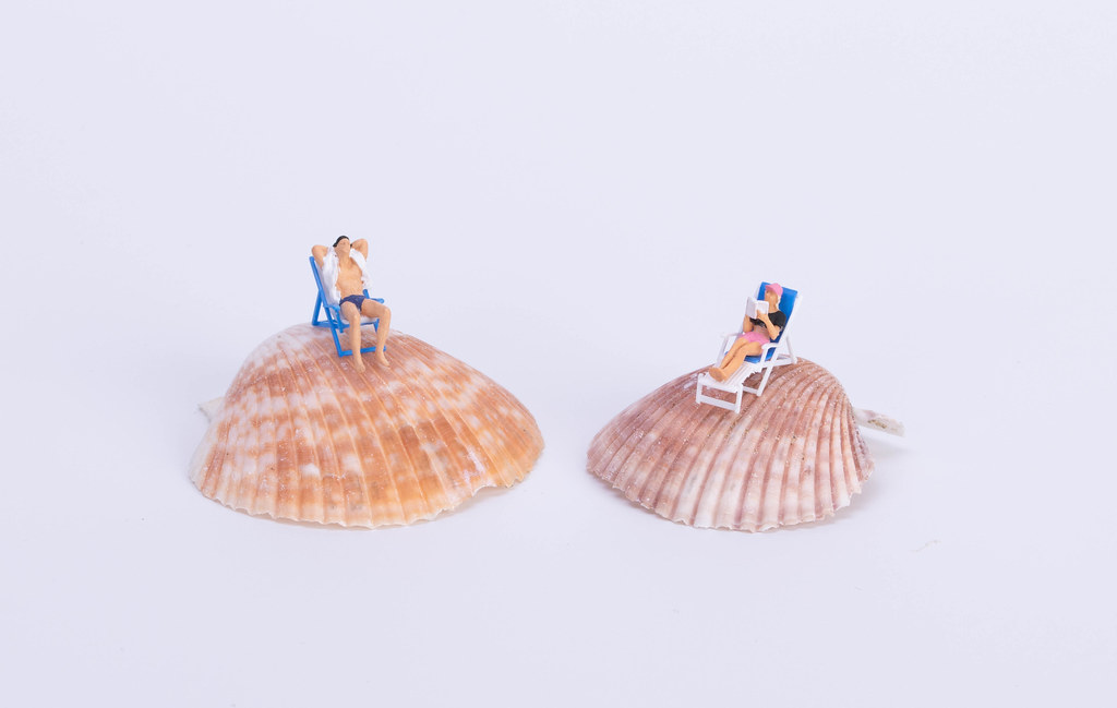 Couple sitting in deck chairs on sea shell