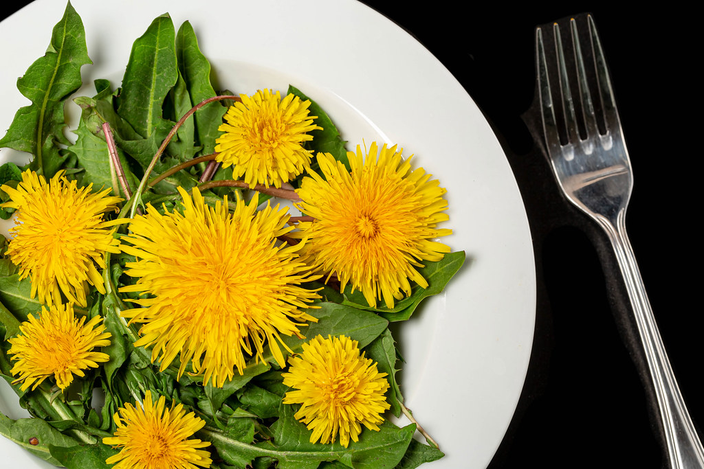 Dandelion salad with leaves and flowers