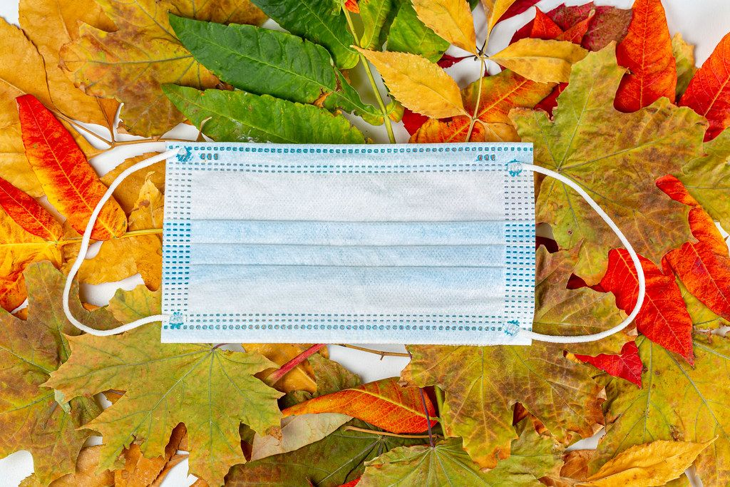 Disposable medical mask on autumn colorful leaves, top view