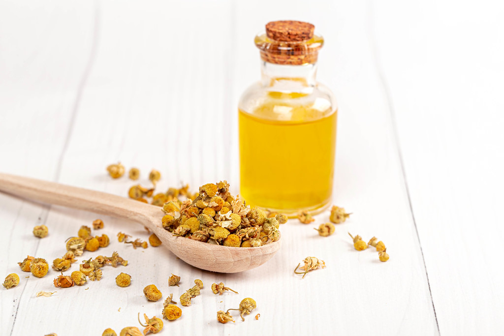 Dried chamomile flowers and a bottle of oil on a white wooden background