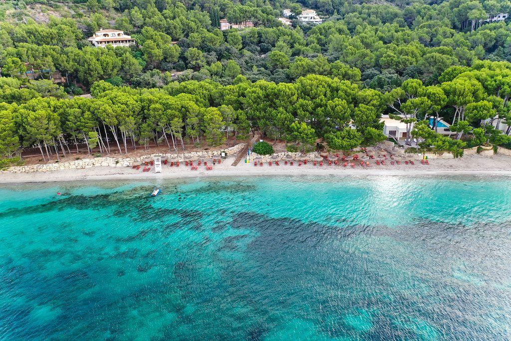 Drone shot of playa de Formentor, Cala Pi de la Posada on Majorca. Beautiful beach with pine trees
