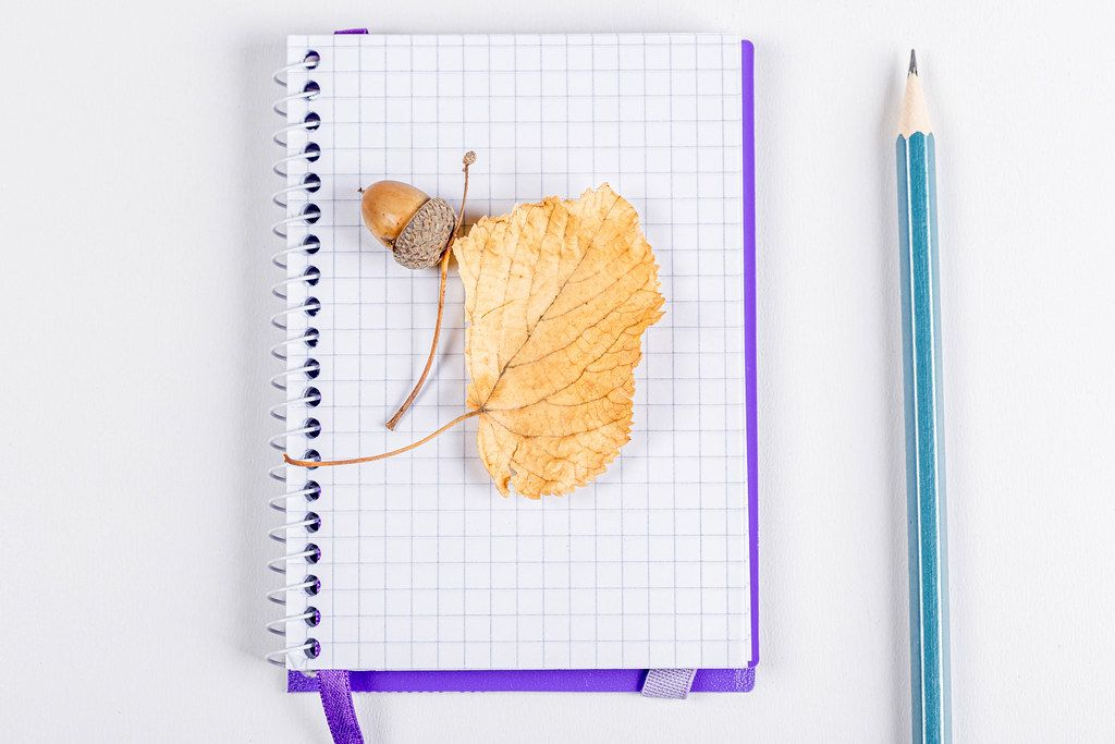 Dry autumn leaf and acorn on a blank notebook on a white background with a pencil
