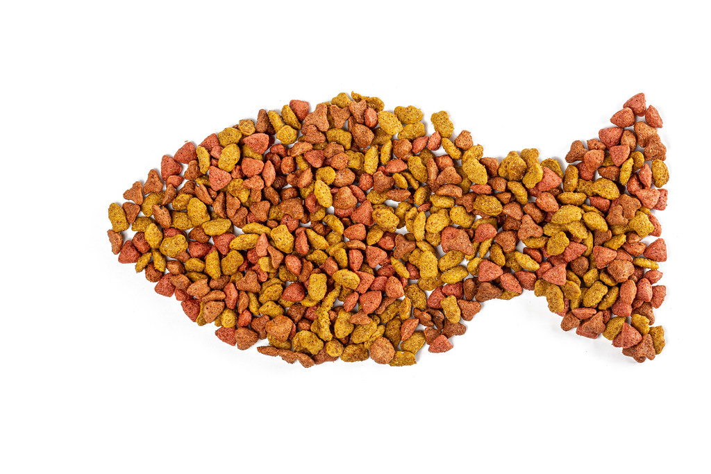 Dry pet food on white in the shape of a fish