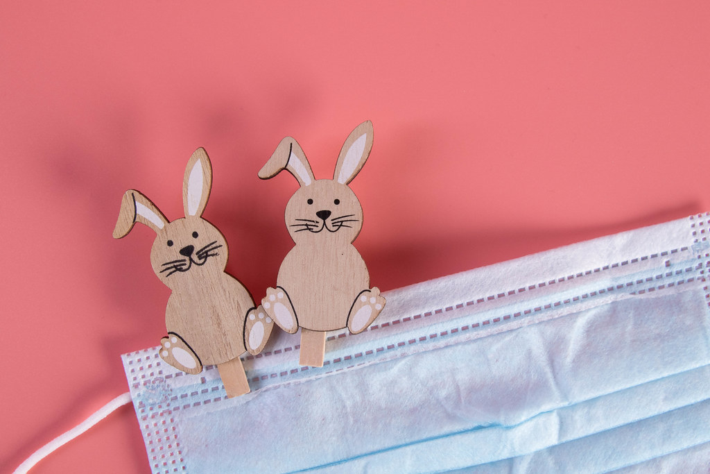Easter bunnies with medical face mask