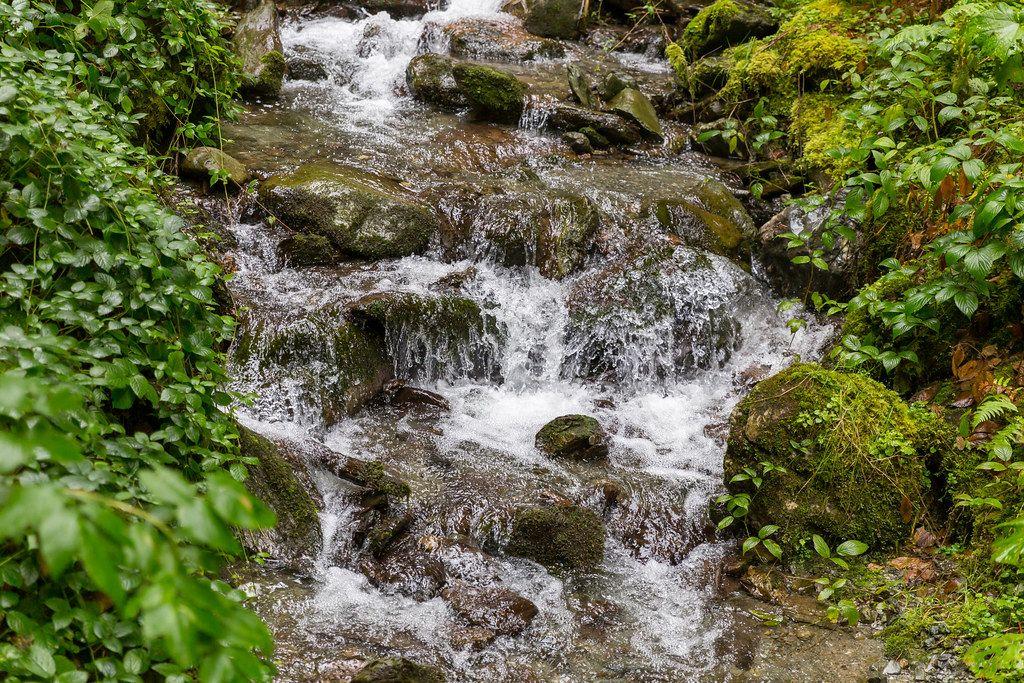 Ein Bach fließt zwischen den Felsen und den grünen Pflanzen in Alpbach, Tyrol