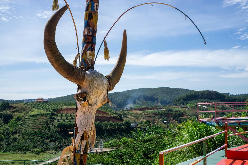 Ein Stier Totenkopf an einem Pfahl auf einer Sonnenterasse mit Aussicht auf Kaffeeplantagen im Hintergrund in Dalat, Vietnam