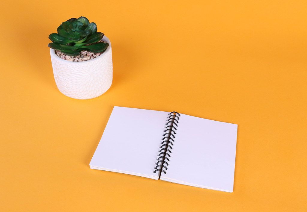 Empty notebook with flower on orange background