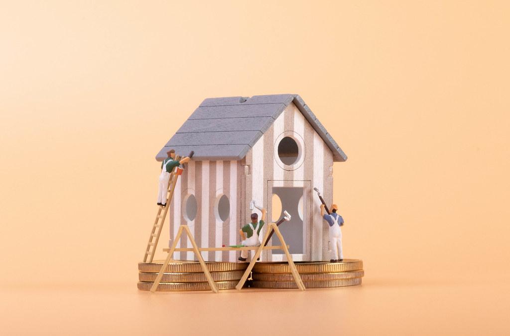 Expensive house renovation concept