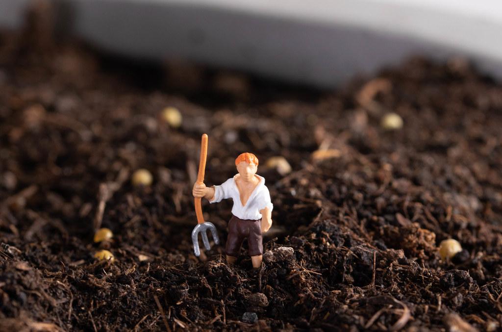 Farmer working on field