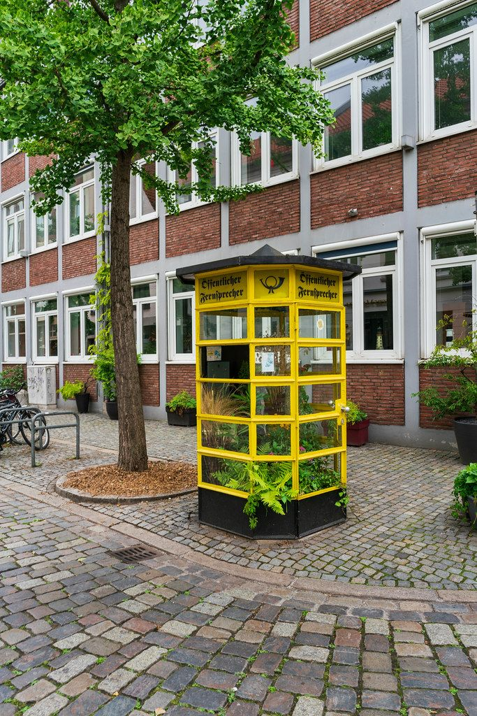 Former telephone booth in city center of Bremen, Germany repurposed as greenhouse for plants
