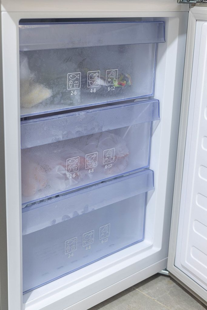Freezer in the Fridge