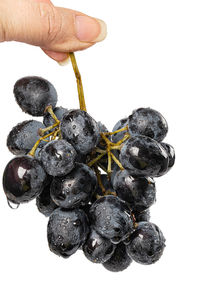Fresh blue grapes in women hand, close up
