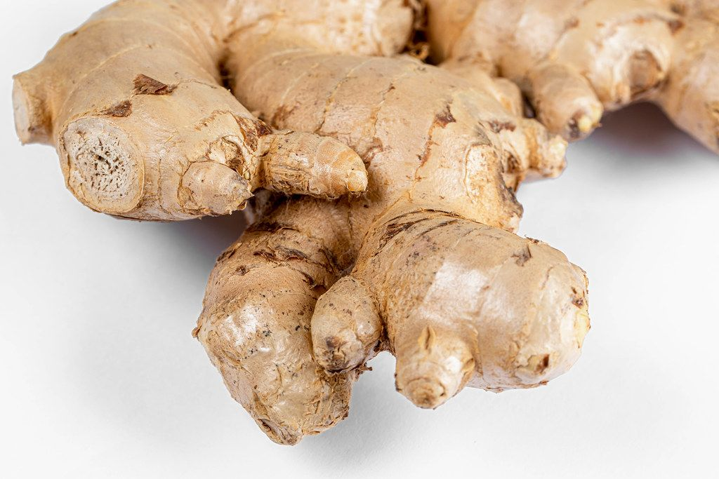 Fresh ginger root on white background