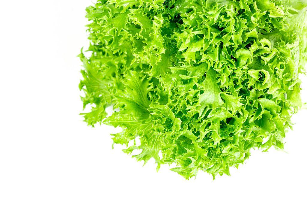 Fresh green lettuce on white background