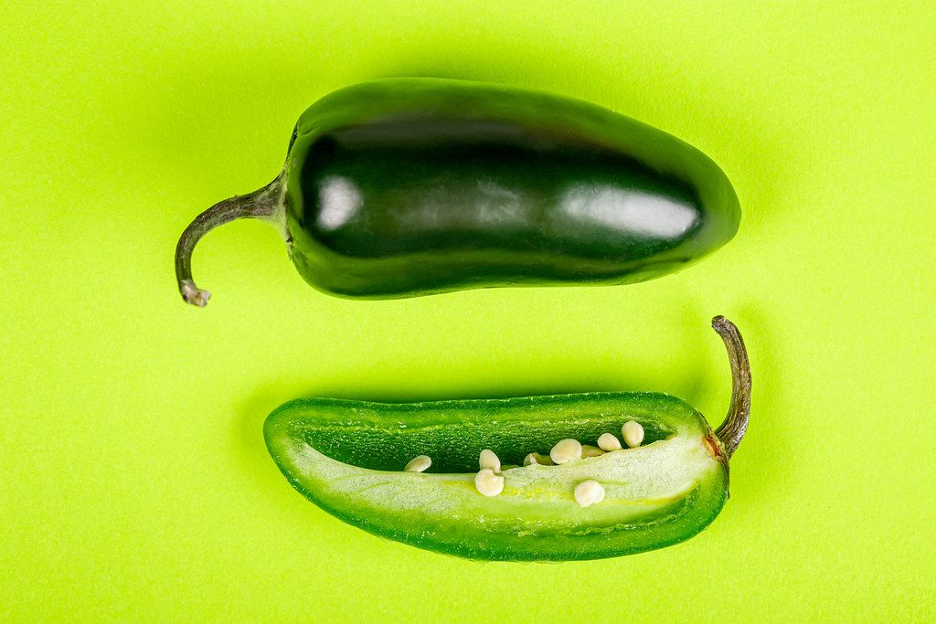 Fresh hot jalapeno pepper on a green background, top view