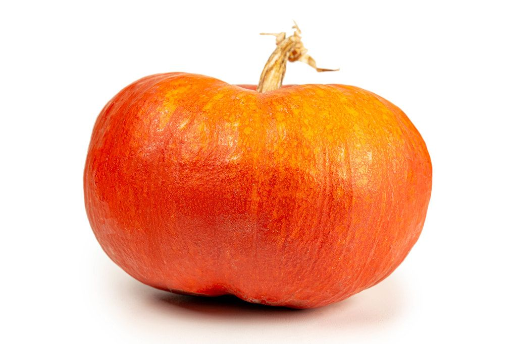 Fresh orange pumpkin on white background