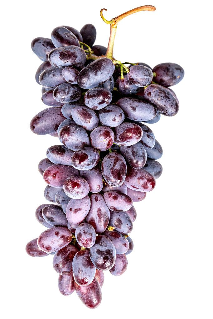 Fresh ripe blue grapes on a white background
