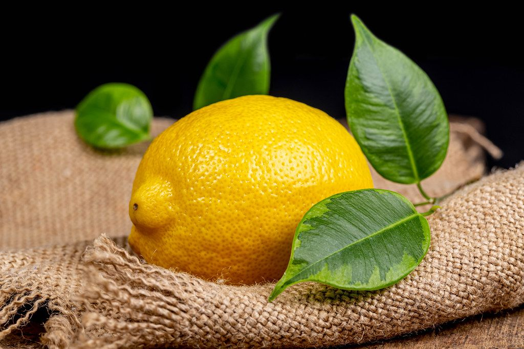 Fresh ripe lemon with leaves on burlap
