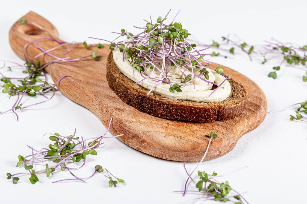 Fresh sandwich with micro-greens of cabbage and cheese