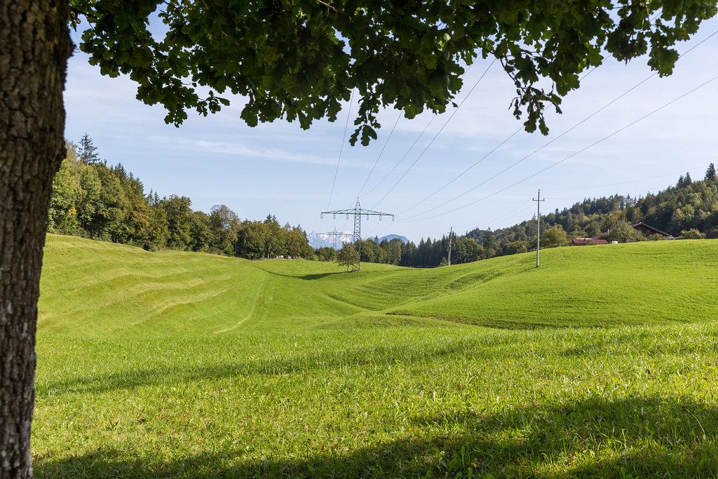 Green field with electricity pylons and surrounded by trees in Tyrol, Austria