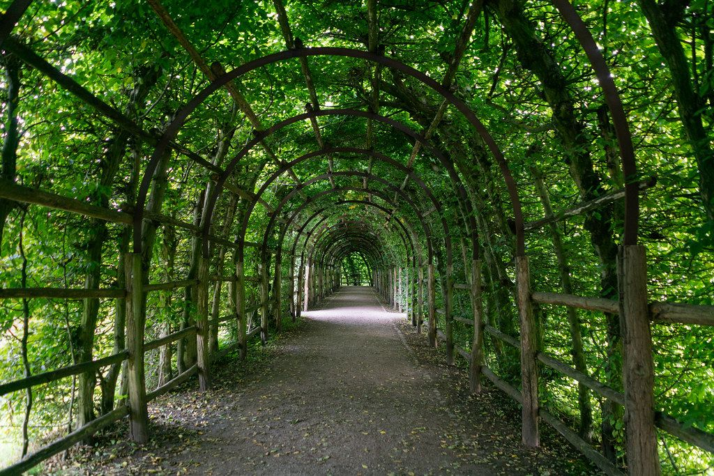 Green passage made of trees and leaves on the area of Schwerin castle