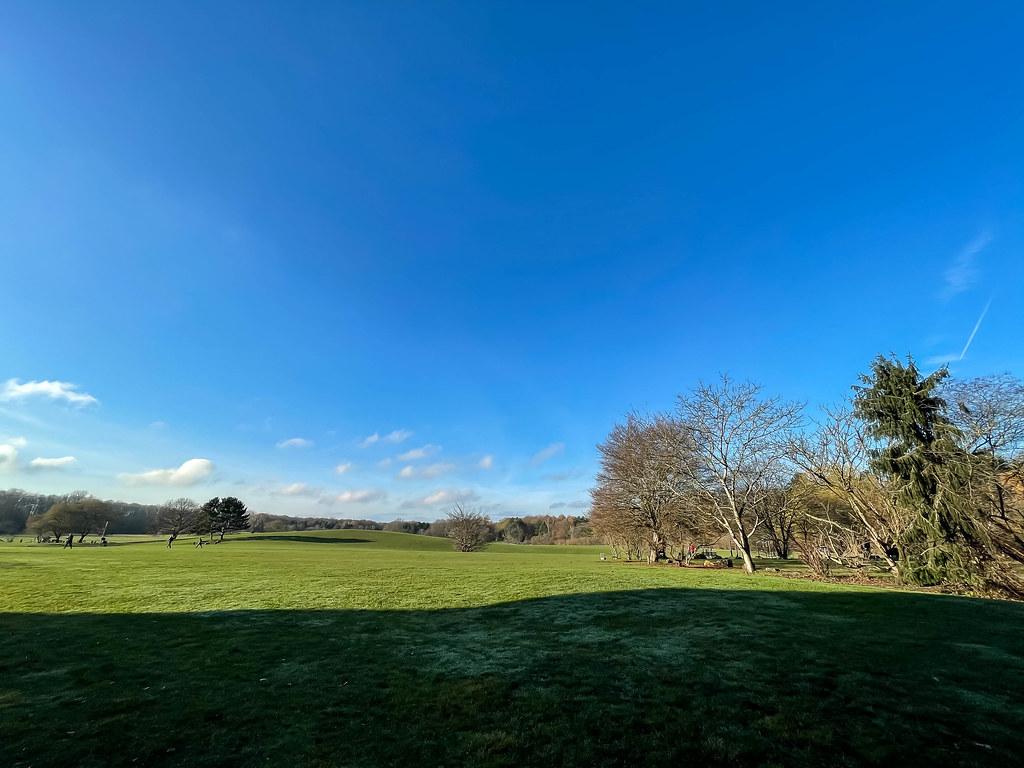 Grüne Wiese und blauer Himmel an einem sonnigen Tag in Dezember am Friedenswald in Köln