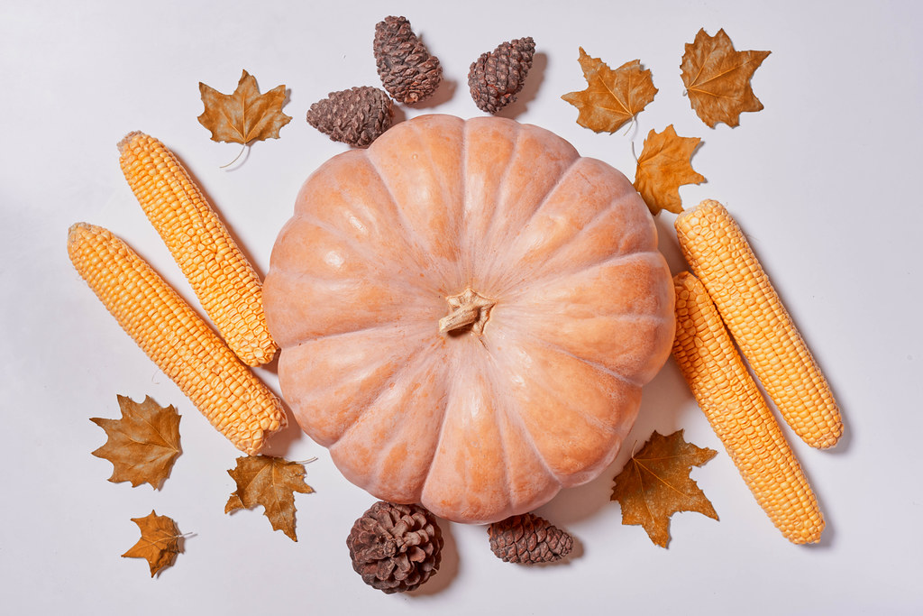 Harvest, thanksgiving concept with pumpkin, corns, pine cones and fall leaves