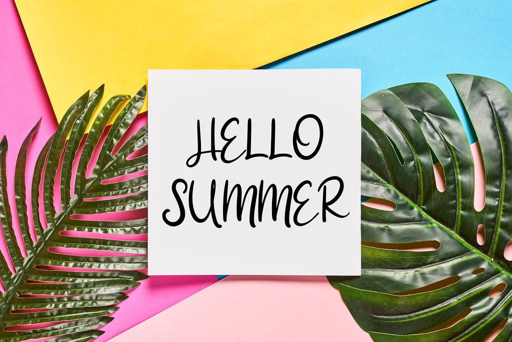 Hello Summer text on colorful paper background with tropical green palm leaves