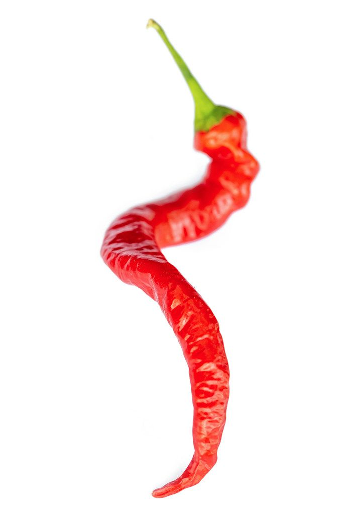 Hot fresh red chili pepper
