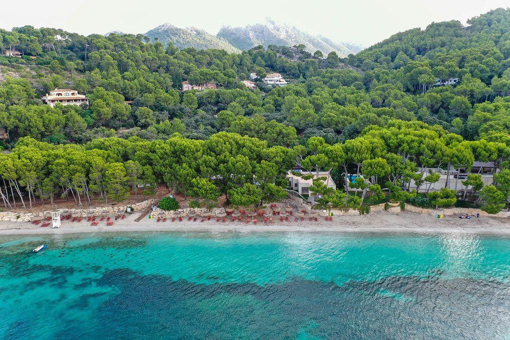 Luftbild: Platja de Formentor auf Mallorca. Strand mit kristallklarem Meer und mallorquinischen Kiefern