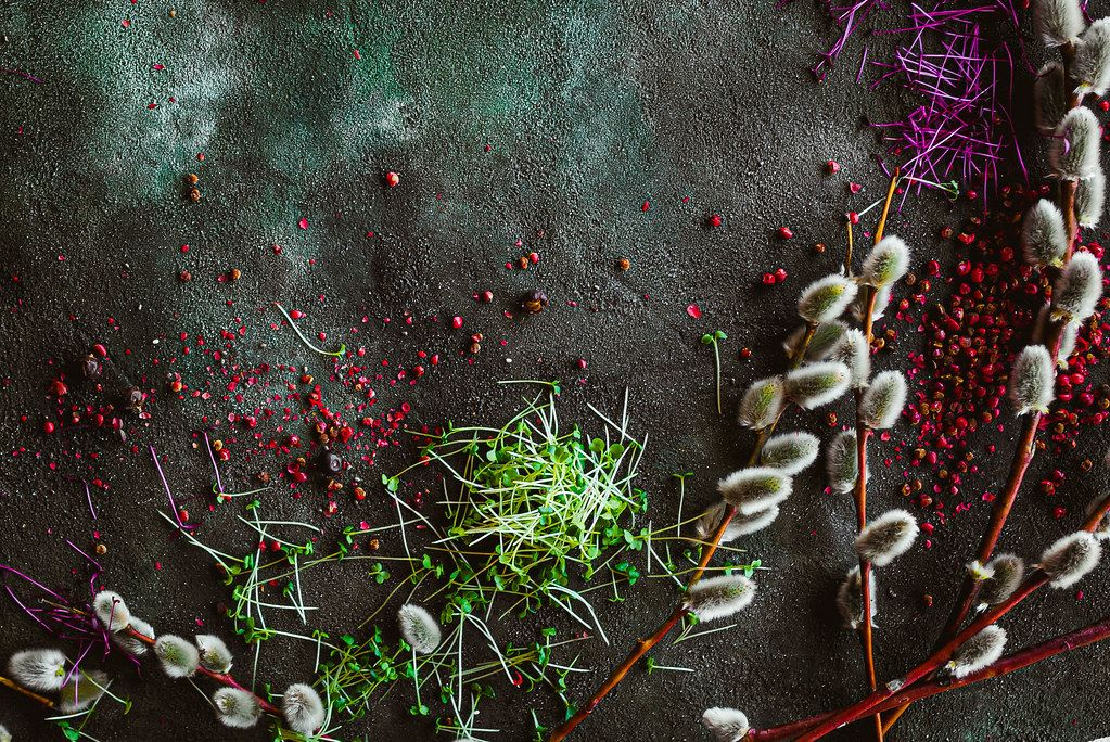 Macro Greens With Red Peppers And Salix Caprea On Dark Background