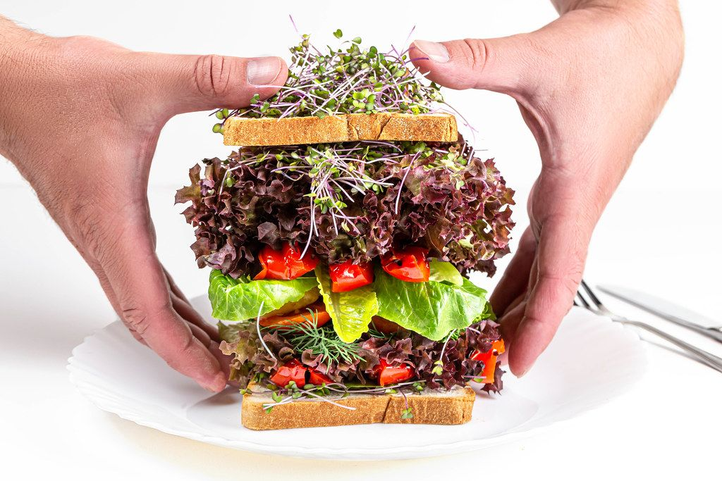 Men's hands take a large vegetarian sandwich